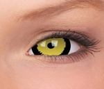 Crazy Lenzen, extra groot mini sclera (17 mm), Tigera